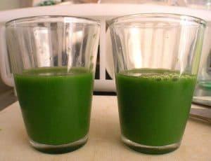 koktajl z młodym zielonym jęczmieniem
