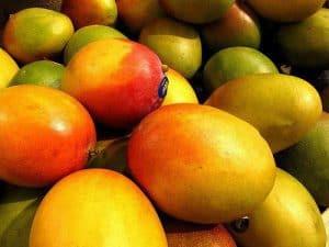 owoce african mango