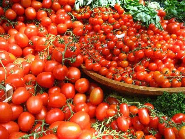 mnóstwo pomidorów na misach