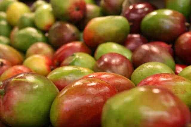 owoce afrykańskiego mango