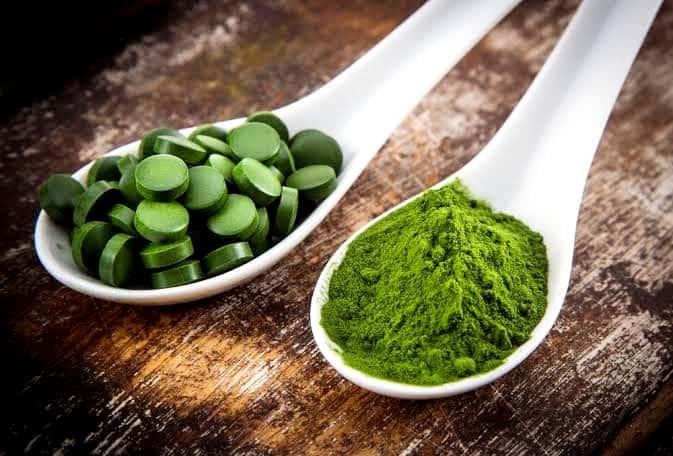 algi suszone w łyżce i tabletki z alg