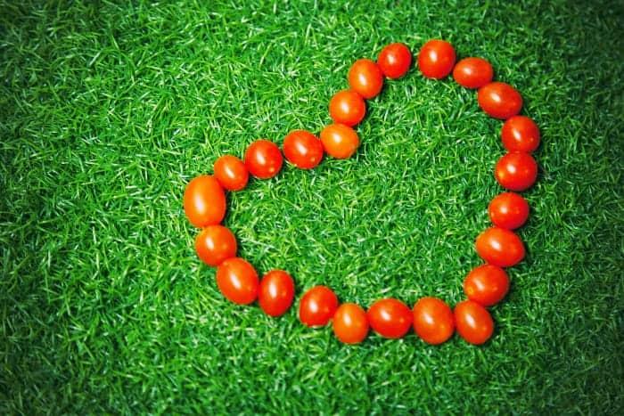 pomidory ułożone w serce na trawie