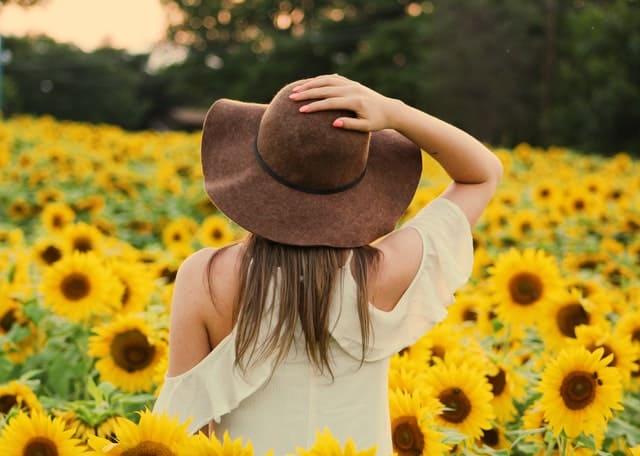 kobieta spaceruje po polu słoneczników